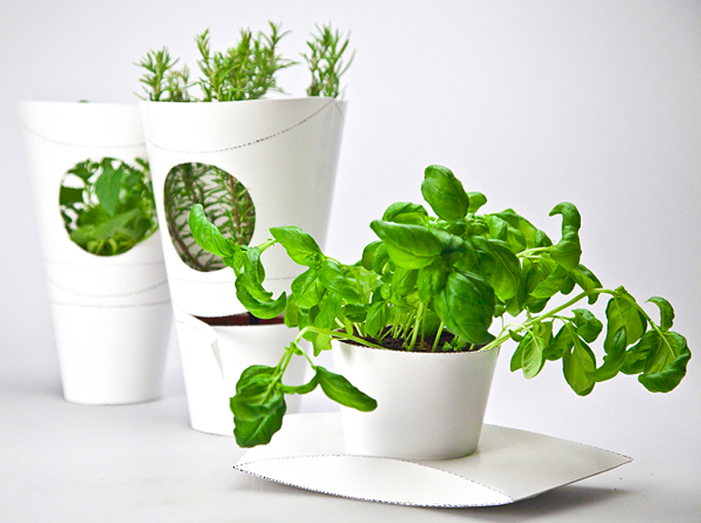 awesome-design-ideas-Herb-Pots-Packaging-Henry-Roberts-Felicitas-Ohnesorge-5