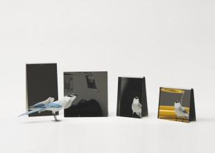 awesome-design-ideas-Mirrors-Hanika-Perez-Brice-Genre-1