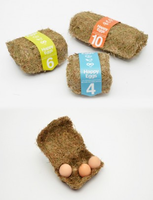 awesome-design-ideas-Happy-Eggs-packaging-Maja-Szczypek-1