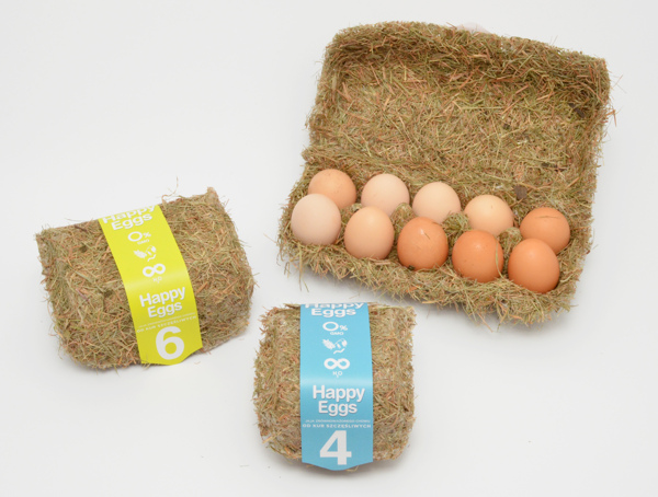 awesome-design-ideas-Happy-Eggs-packaging-Maja-Szczypek-2